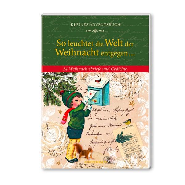 Kleines Adventsbuch