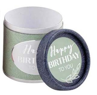 Musikbox Happy Birthday Mint